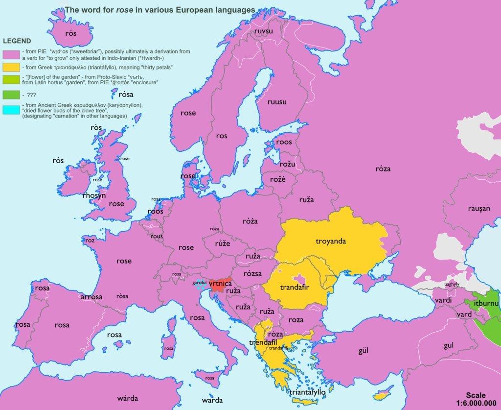 etymologická mapa Evropy_růže